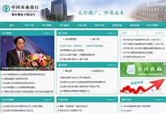 中国农业银行微电园支行【内网】