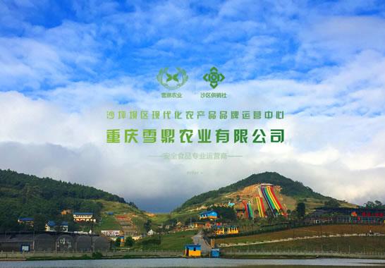 重庆雪鼎农业有限公司