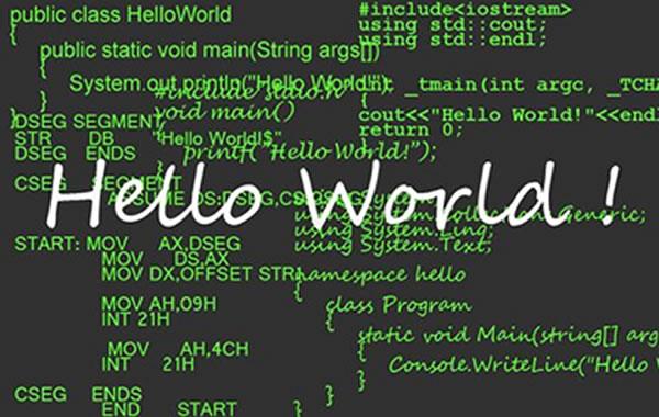 网站程序编程