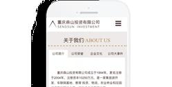 重庆森山投资有限公司【手机网】