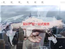 重庆市前沿专利事务所 官网上线
