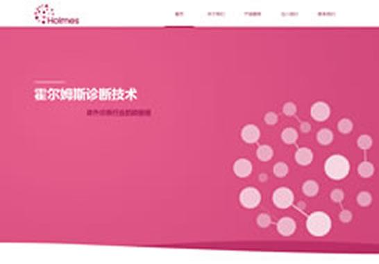 霍尔姆斯(北京)诊断技术有限公司