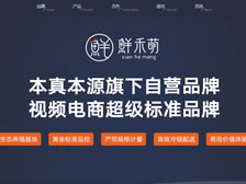 重庆本真本源实业有限公司 正式上线
